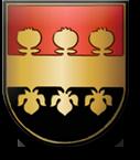 Wappen Glasfaser-Internet in Albersdorf-Prebuch